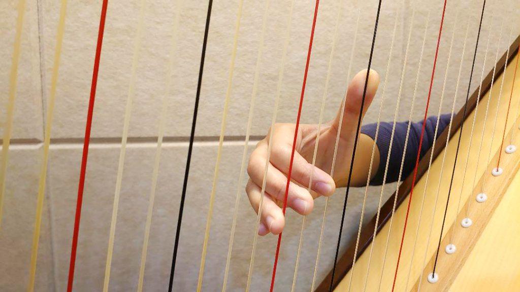 學豎琴 豎琴技巧 豎琴手形